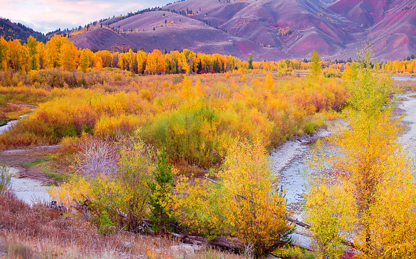 Wyoming, Jackson Hole, Fall Colors, Sunset, 怀俄明, 秋色