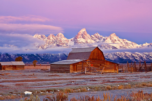 Wyoming, Grand Teton National Park, Mormon Barns , Dawn, 怀俄明, 大提顿国家公园, 黎明