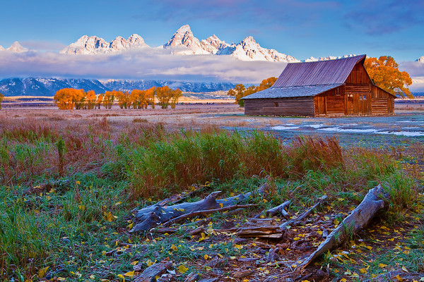 Wyoming, Grand Teton National Park, Mormon Barns, Fall Colors, 怀俄明, 大提顿国家公园, 秋色