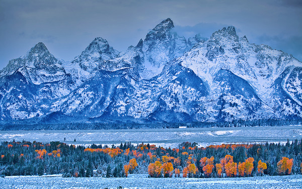 Wyoming, Grand Teton National Park, Fall Colors, 怀俄明, 大提顿国家公园, 秋色