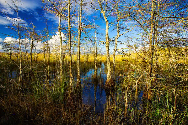 Florida, Everglades National Park,  Pa Hay Okee