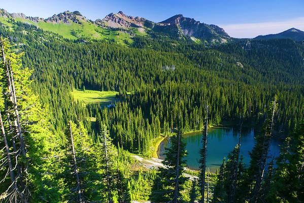 Washington, Mount Rainier, Sunrise Visitor National Park, 华盛顿州,国家公园