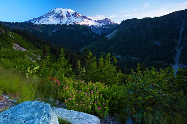 Washington, Mount Rainier,  National Park,  华盛顿州,国家公园