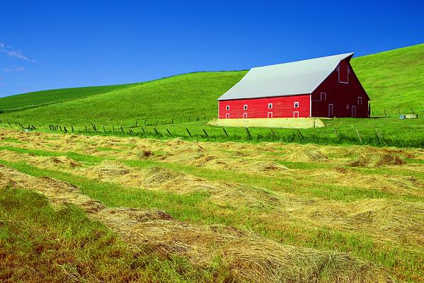 Washington State, Palouse Region, Barn, 华盛顿州,  田园,